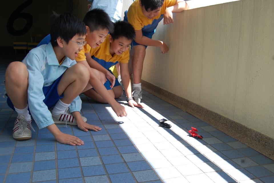 參與「百佳綠色學校計劃」的學校學生正在了解太陽能電子車的原理